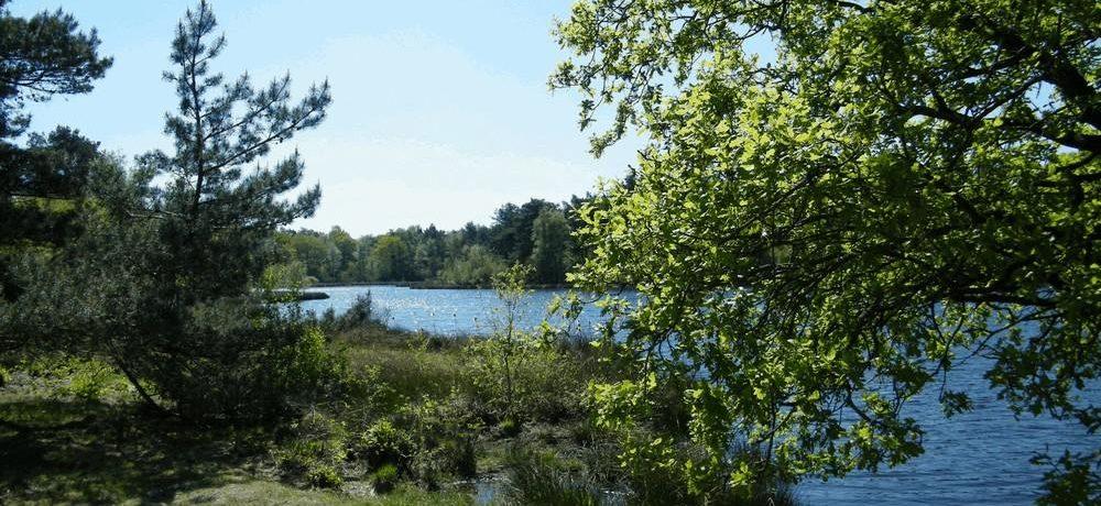 Jelly's Hoeve in Havelte is een fijne kleine camping in Drenthe met 43 kampeerplaatsen en 3 huuraccommodaties.